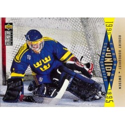 1995-96 UD Collectors Choice c. 348 Robert Borgqvist SWE