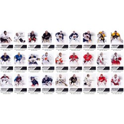 2010-11 Panini All Goalies Kompletni set 100 karet
