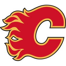 Lot 100 karet  Calgary Flames