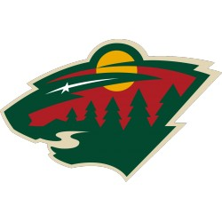 Lot 50 karet Minnesota Wild