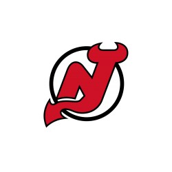 Lot 100 karet  New Jersey Devils
