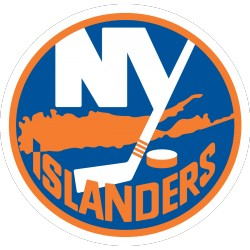Lot 100 karet  New York Islanders