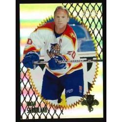 1996-97 Summit Premium Stock c. 039 Brian Skrudland FLO