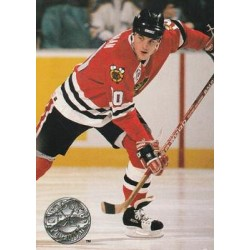 1991-92 Pro Set Platinum c. 165 Brian Noonan CHI